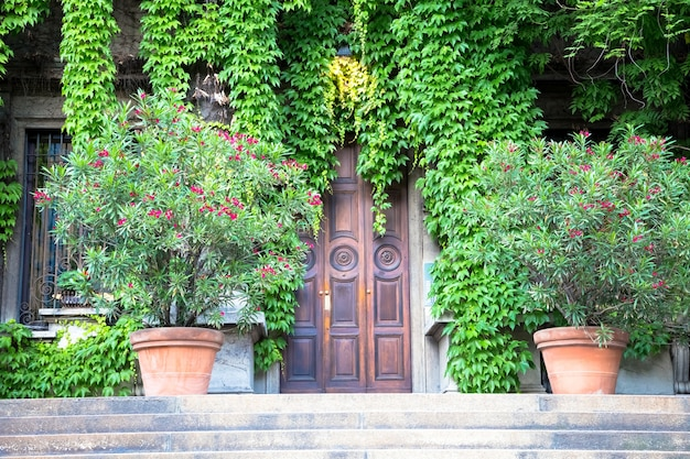 Milano, italia - circa agosto 2020 - integrazione tra natura e immobili in questo vecchio edificio italiano