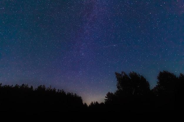 La via lattea. un bellissimo cielo notturno estivo di agosto con le stelle. starfall, le perseidi che cadono. sfondo