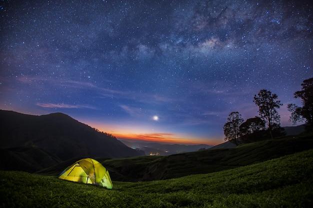 La via lattea e il campeggio nella piantagione di tè nell'altopiano di cameron