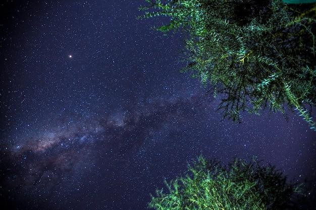 Via lattea di notte sul lago naivasha di notte. kenya