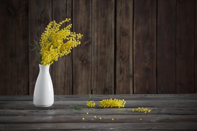 Mimosa in vaso su fondo di legno scuro