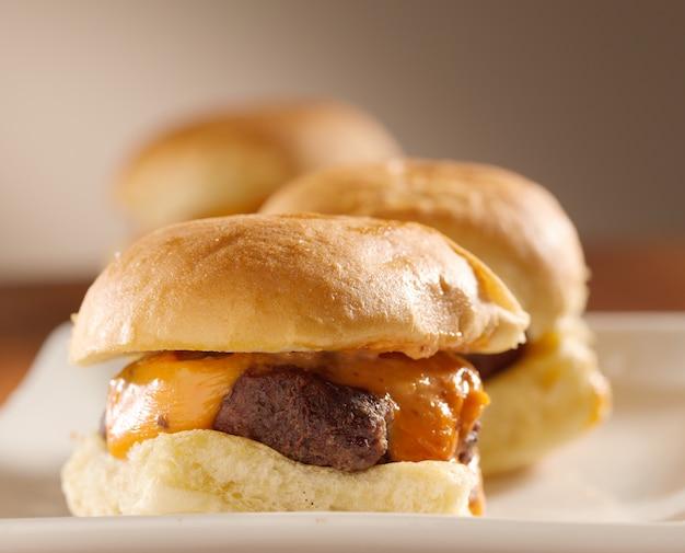 Mini cursori dell'hamburger girati con il fuoco selettivo