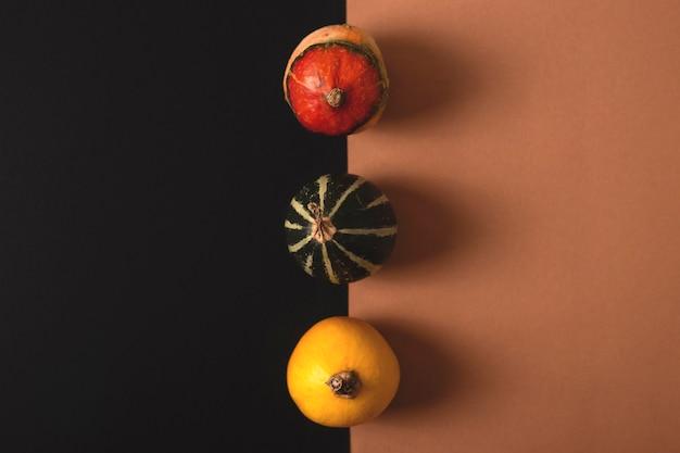 Mini zucche di diversi colori e modelli su sfondo combo nero e marrone concetto di halloween