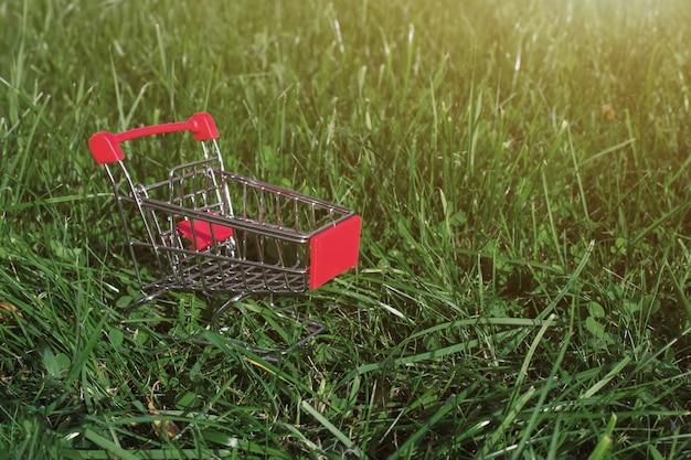 Mini carrello o carrello contro la parte posteriore verde naturale con luce solare. cibo sano per equilibrato