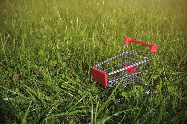 Mini carrello con copia spazio su sfondo verde erba con la luce del sole. nutrizione naturale