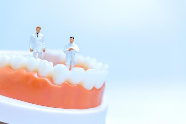 Dentisti in miniatura osservando e discutendo dei denti umani con le gengive