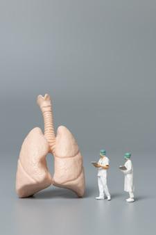 Persone in miniatura medico e infermiere osservando e discutendo sui polmoni umani