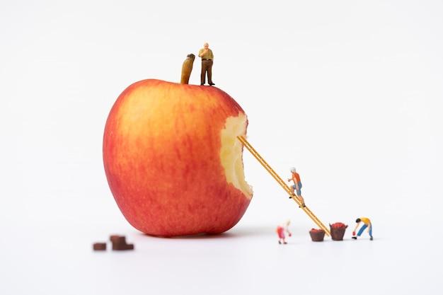Gente miniatura, agricoltore che si arrampica sulla scala per la raccolta delle mele rosse dalla grande mela isolata