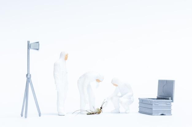Persone in miniatura, ricerca di scienziato per la causa della morte in una zanzara, concetto di ricerca di scienziato