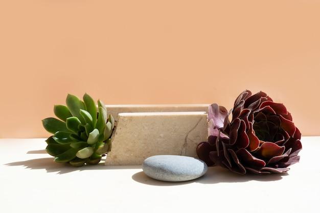 Esposizione minima del prodotto moderno su fondo beige con podio con piante succulente fresche