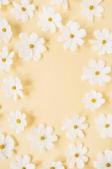 Concetto in stile minimale. ghirlanda di fiori di camomilla margherita bianca su giallo pallido