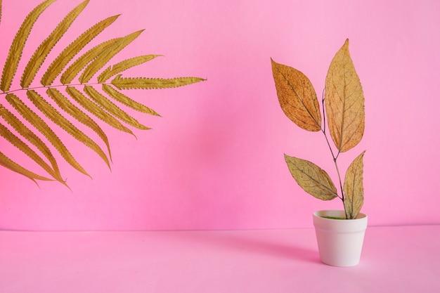 Idea di concetto minimalista. foglie secche su un vaso bianco su sfondo rosa