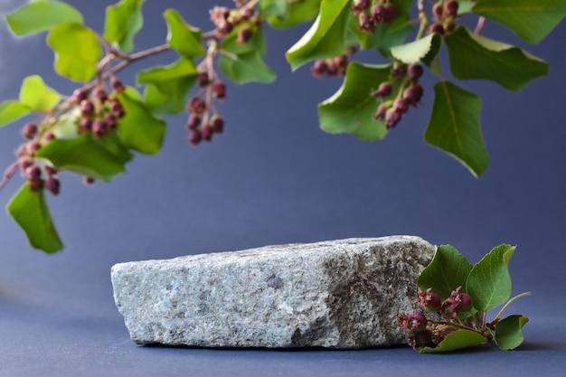 Scena minimalista di una pietra sdraiata con un ramo e bacche su sfondo blu. passerella per la presentazione di prodotti e cosmetici. vetrina con palco per prodotti naturali. eco-tessitura.