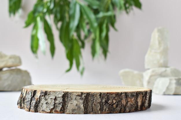 Un palcoscenico minimalista in legno e un ramo verde e pietra per la presentazione di merci e cosmetici. vetrina con palco per prodotti naturali. marchio ecologico.