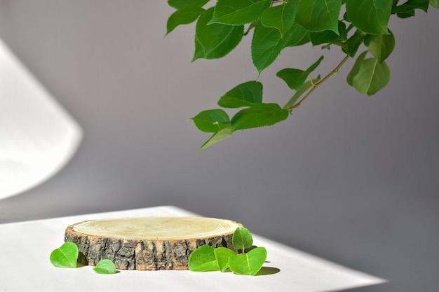Palcoscenico in legno minimalista e ramoscello verde. passerella per la presentazione di prodotti e cosmetici. vetrina con palco per prodotti naturali. marchio ecologico.
