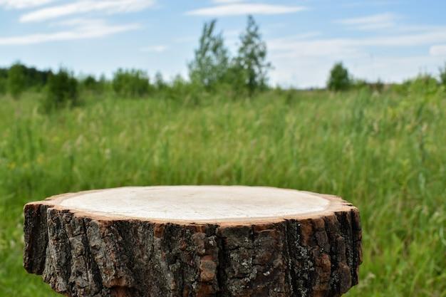 Un palcoscenico minimalista in legno sullo sfondo di una radura. passerella per la presentazione di prodotti e cosmetici. vetrina con palco per prodotti naturali. marchio ecologico.