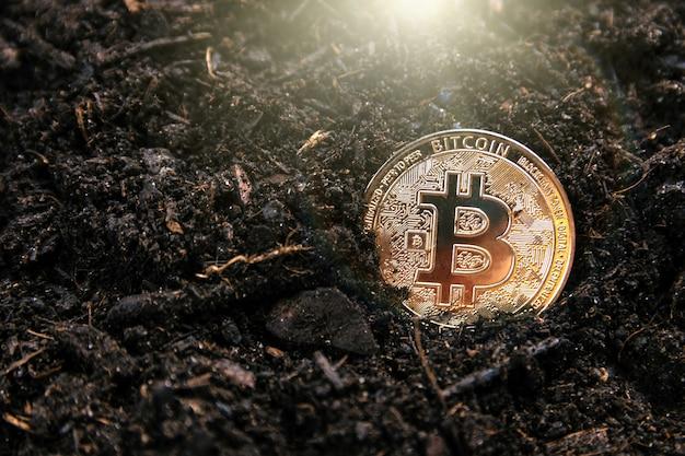 Mining bitcoin dorato. concetto di criptovalute
