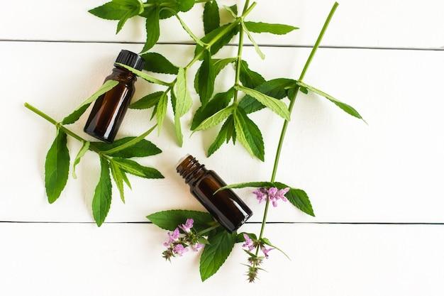 Olio essenziale di menta in bottiglie di contagocce e ramoscelli di menta su un tavolo di legno bianco.