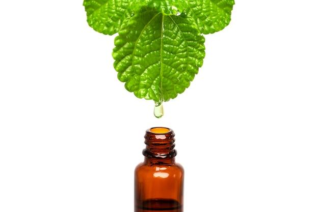 Goccia di olio di medicina naturale a base di erbe che cade da una foglia alla bottiglia con spazio di copia