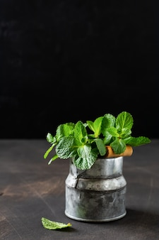 Foglie di menta, fresco bouquet di menta in un vecchio vaso secchio rustico su un vecchio buio.