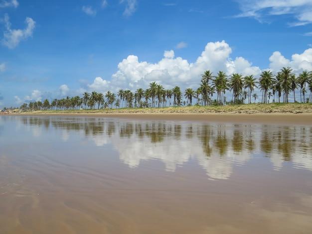 Specchio d'acqua a barra do coqueiros beach, ad aracaju, sergipe, brasile.