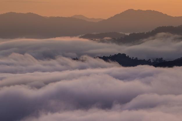 Mist valley