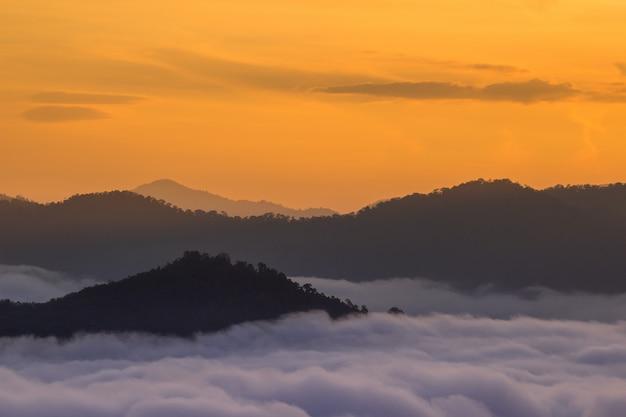Mist valley Foto Premium