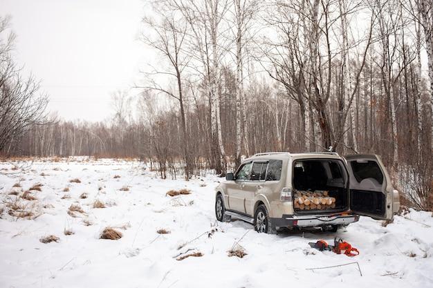 Mitsubishi pajero montero nella foresta invernale con legna da ardere nel tronco