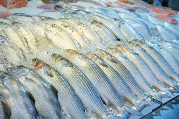 Pesce fresco misto nel mercato della tailandia come pesce del mulet.