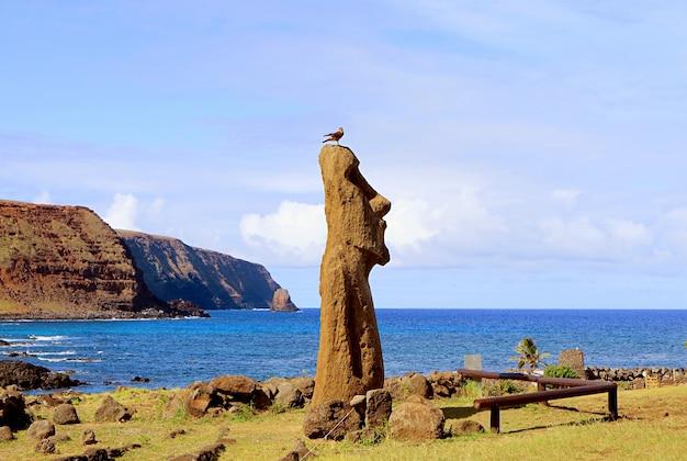 Moai a vere ki haho in ingresso a ahu tongariki con un uccello appollaiato sulla testa isola di pasqua cile