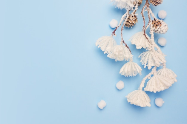 Mock up di foglie di eucalipto e pianta di cotone con posto per il testo su sfondo blu. corona fatta di rami, coni