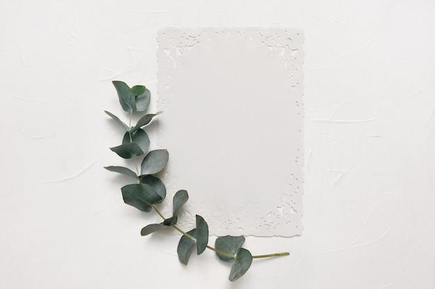 Manichino di foglie di eucalipto e foglio di carta bianco con posto per testo su bianco
