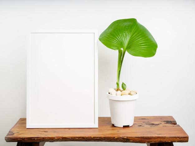Mock up poster cornice in legno e pianta botanica proiphys amboinensis con foglie verdi in vaso bianco