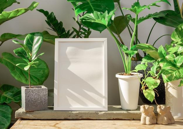 Mock up poster cornice in legno e monsteraphilodendron selloumficus lyratahouse pianta in vaso su tavola di legno