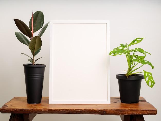 Mock up cornice per poster in legno bianco con pianta di gomma (ficus elastica) e monstera obliqua in contenitore nero su sedia di legno