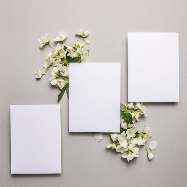 Mock up con fiori di gelsomino freschi naturali allegati su uno sfondo grigio, copia spazio.