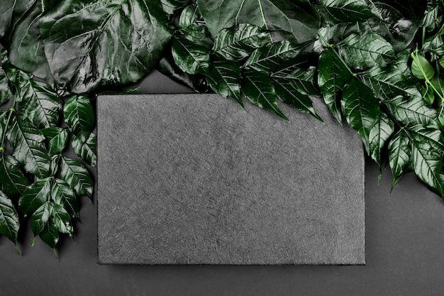 Mockup di scatola nera su uno sfondo scuro con foglie verdi sui lati