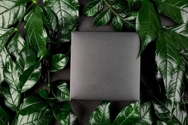 Mockup per confezione regalo nera uno sfondo scuro con foglie verdi sui lati, layout creativo, disposizione piatta, concetto di natura, spazio per il testo, vista dall'alto