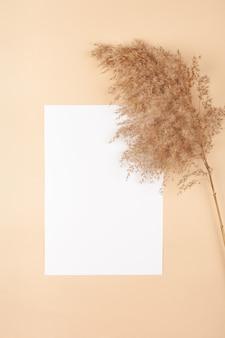 Mocup su fondo beige. spazio bianco vuoto per il testo.
