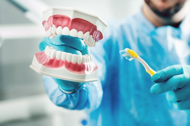 Un modello di una mascella umana con denti e uno spazzolino da denti nella mano del dentista
