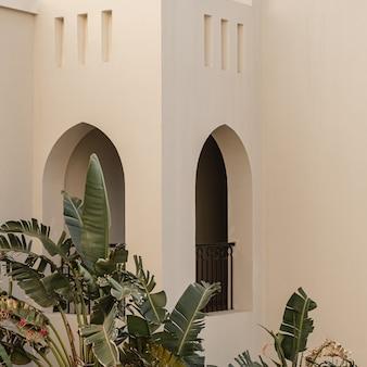 Moderno edificio in stile orientale con pareti beige, finestre e foglie di piante di palma tropicali tropical