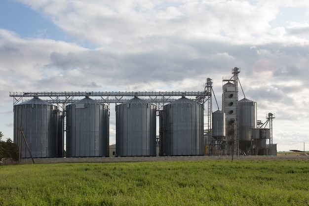 Moderno elevatore per granaio e linea di pulizia dei semi.