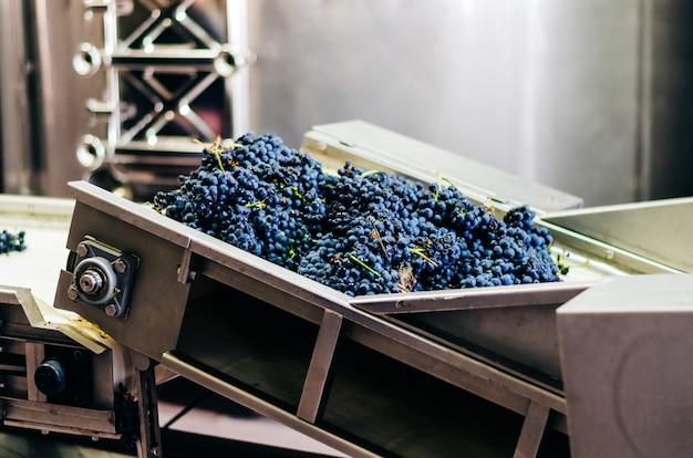 Moderna macchina vinicola con uva