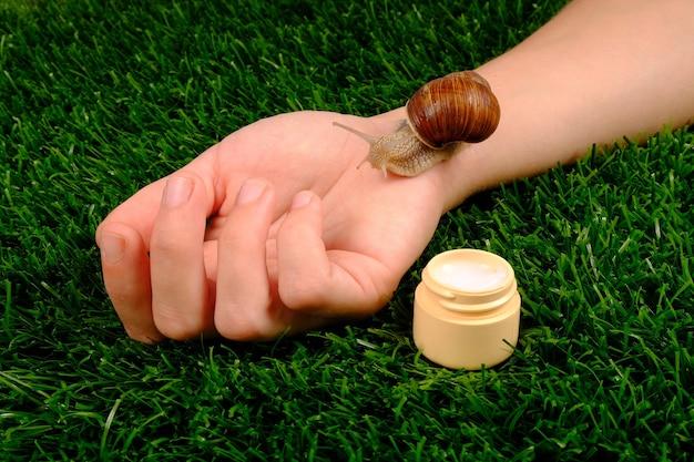 Crema idratante e lumaca sul braccio su erba verde