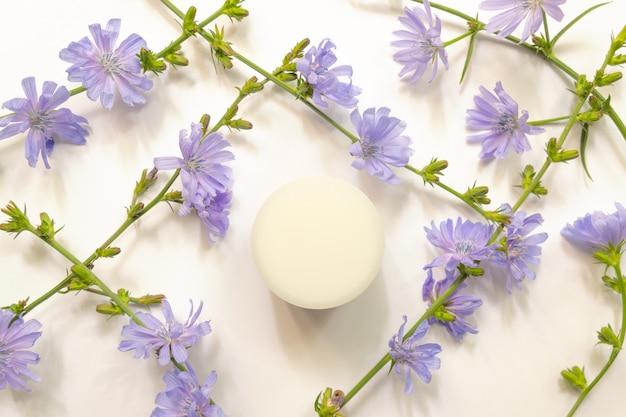 Vasetto di crema idratante e vista dall'alto di cicoria