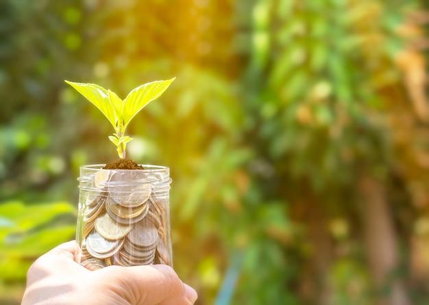 Nota dell'albero della banconota della bottiglia di soldi con la pianta che cresce sulla cima per il concetto naturale del giardino di affari verdi, il risparmio dei soldi e l'investimento