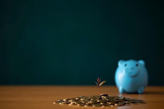 Idee di risparmio di denaro per case, idee finanziarie e finanziarie, risparmio di denaro in preparazione per il futuro, crescita di monete