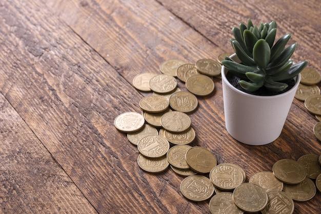 Risparmio di denaro, investimento, fare soldi per il futuro, concetto di gestione della ricchezza finanziaria. money tree su uno sfondo di legno con monete d'oro intorno