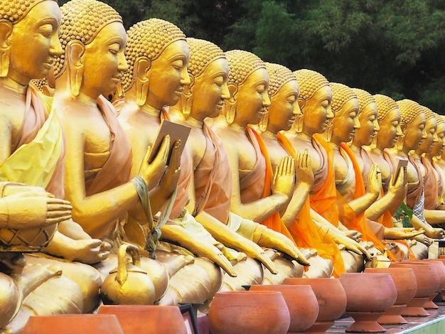 Statue del monaco che si siedono in vari gesti al tempio pubblico