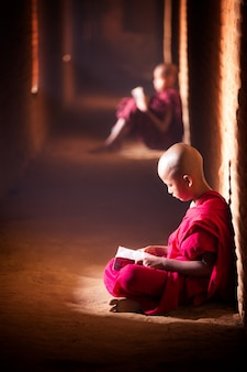 Studio del monaco nel tempio